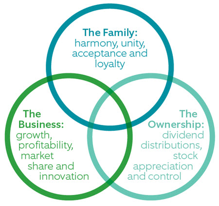 Three-Circle Model of the Family Business system